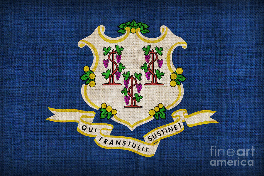 Connecticut Painting - Connecticut State Flag by Pixel Chimp