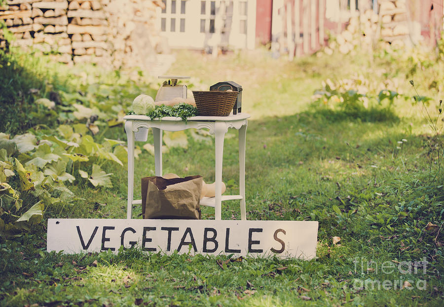 Connecticut Vegetable Stand Photograph