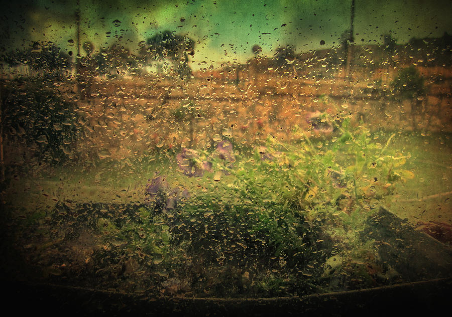 Rain Photograph - Constrained By Time by Taylan Apukovska