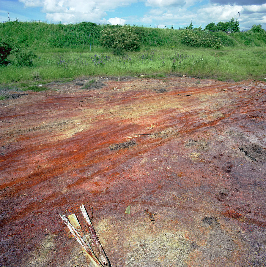 Leachate Photograph - Contaminated Soil by Robert Brook/science Photo Library