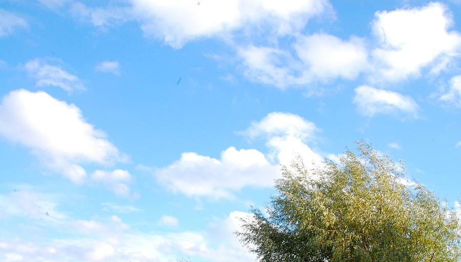 Sky Photograph - Contemplation 2 by Karen Weetman