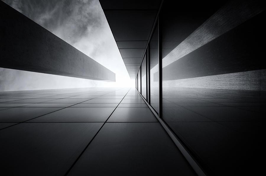 convergence by Darko Ivancevic