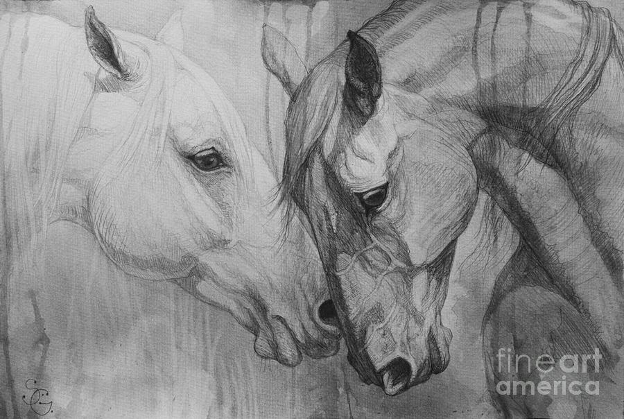 Horse Painting - Conversation I by Silvana Gabudean Dobre
