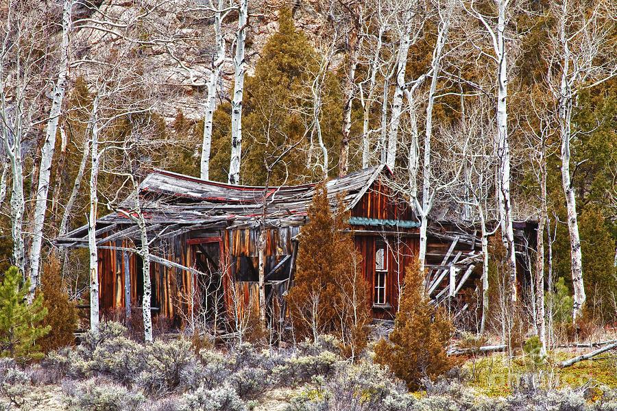 Cabin Photograph - Cool Colorado Rural Rustic Rundown Rocky Mountain Cabin  by James BO  Insogna