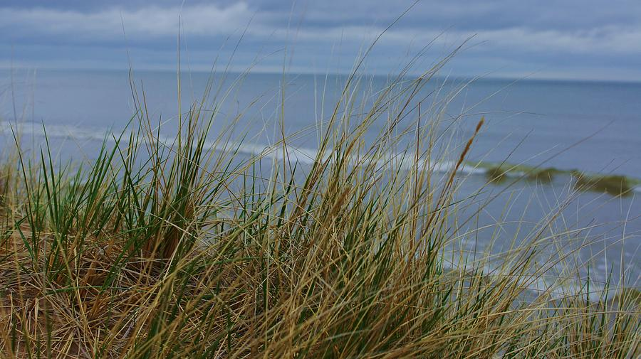 Lake Photograph - Cool Day At The Beach by Rosemarie E Seppala