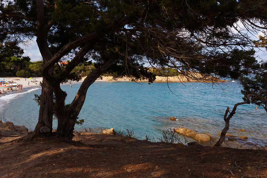 Sardinia Photograph - Cool Shade by Paul Indigo