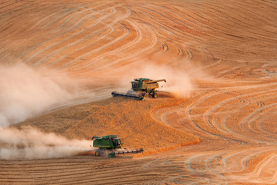 Harvest Photograph - Cooperation by Mary Jo Allen