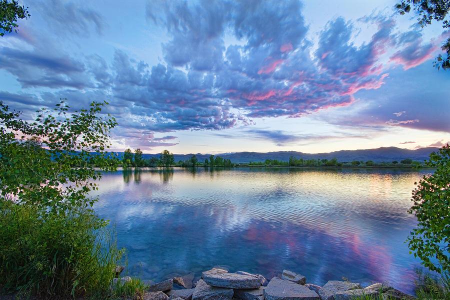 Coot Lake View Photograph