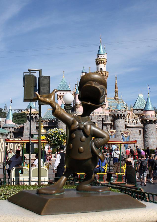Walt Disney Photograph - Copper Donald by David Nicholls