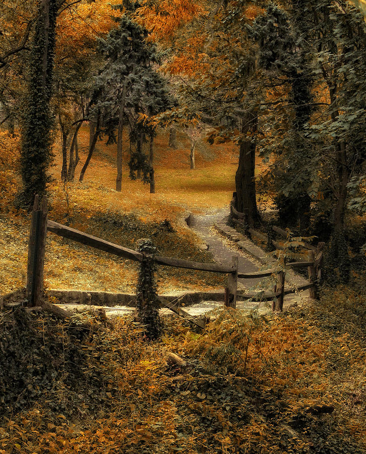 Seasons Photograph - Copper Field by Jessica Jenney
