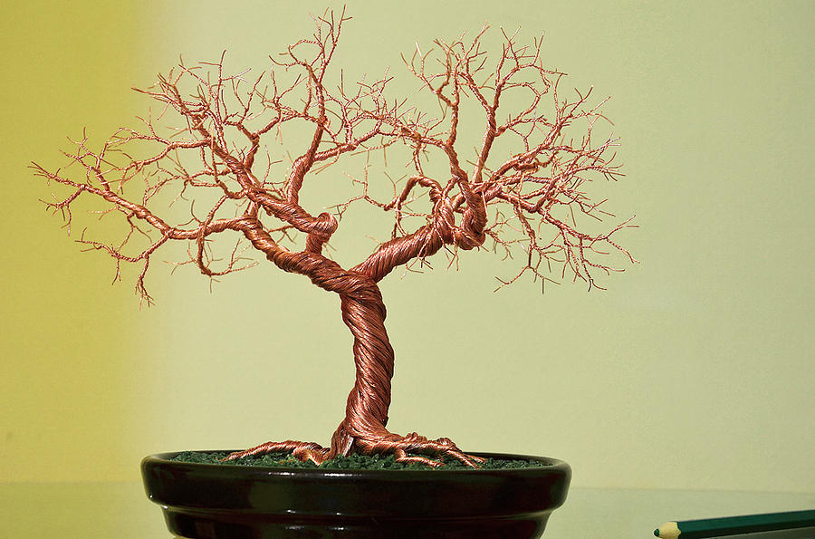 Copper Wire Bonsai Tree Sculpture Sculpture by Minskis