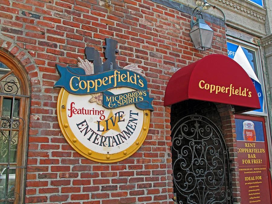 Copperfields Photograph - Copperfields by Barbara McDevitt