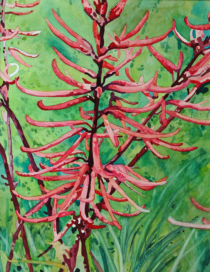 Coral Bean Painting - Coral Bean Flowers by Terry Holliday