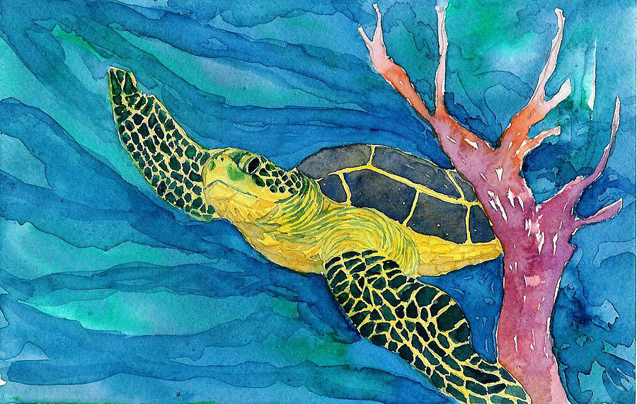 Coral Sea Turtle by Anne Marie Brown