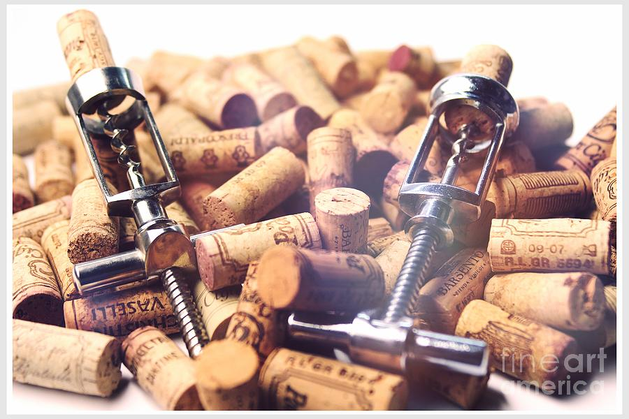 Corkscrew Photograph - Corks And Corkscrews  by Stefano Senise