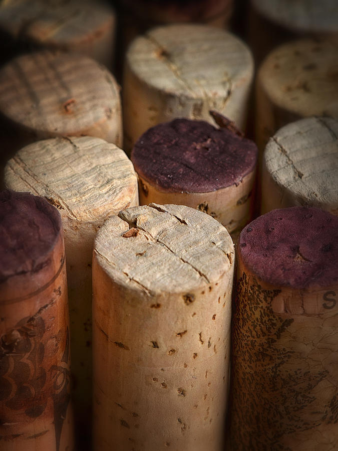 Wine Photograph - Corks by Dennis James