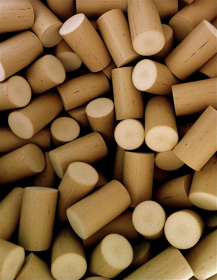Corks Photograph by Walt Stoneburner