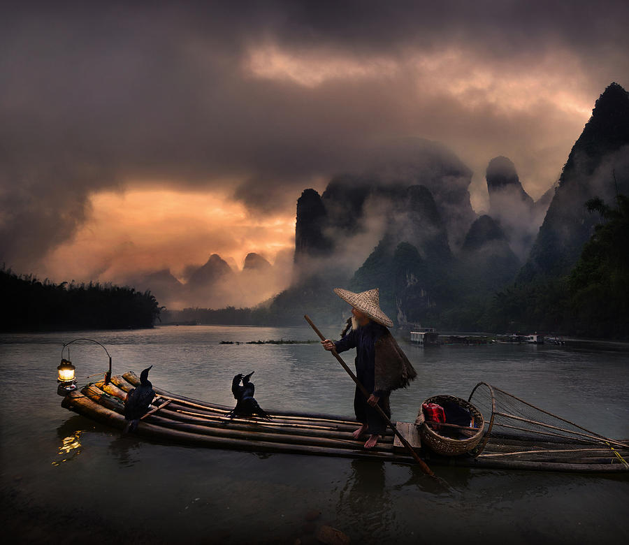 Cormorant Photograph - Cormorant Show At Li River by Weerapong Chaipuck