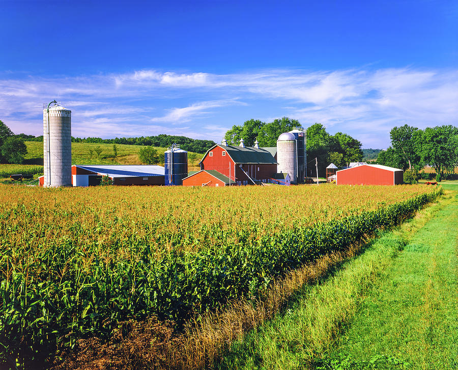 Corn Crop And Iowa Farm At Harvest Time Photograph by Ron thomas