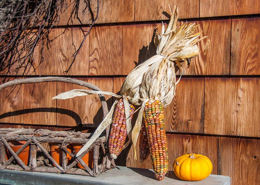 Barn Photograph - Corn by Guy Whiteley