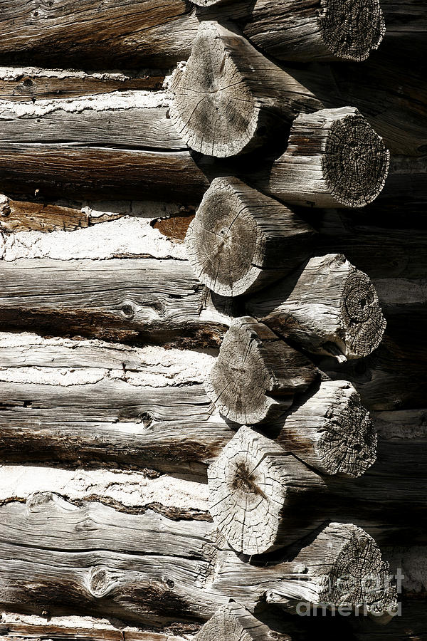 Rustic Photograph - Corner Logs by Lincoln Rogers