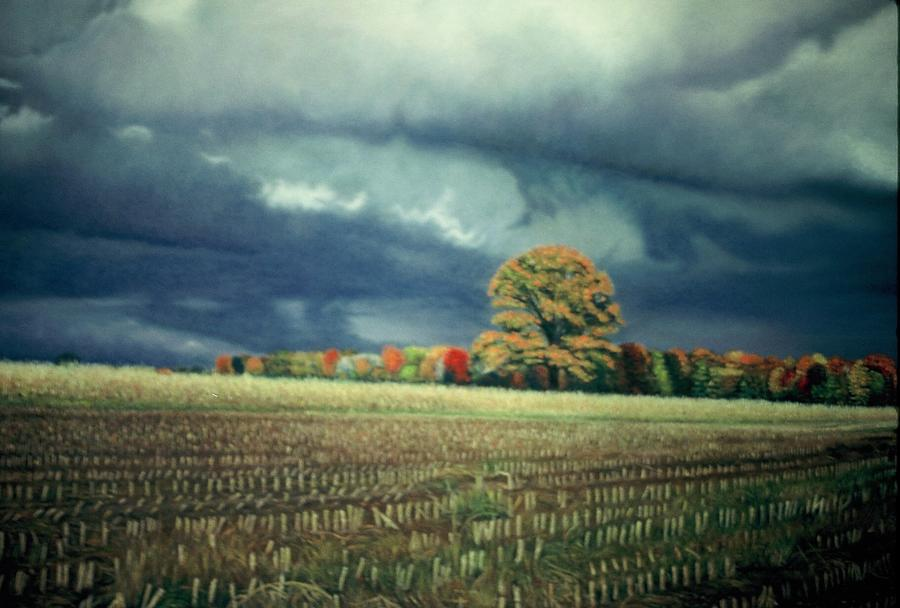 Scenic Pastel - Cornfield On Argentine Road by James Welch