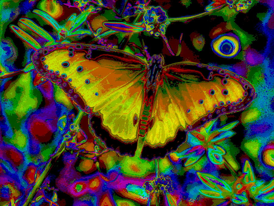 Butterfly Digital Art - Cosmic Butterfly by Rebecca Flaig