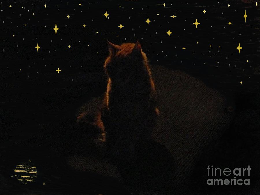 Cats Painting - Cosmic Kitty by Jacquelyn Roberts