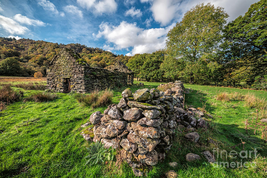 Betws Y Coed Photograph - Cottage Ruin by Adrian Evans