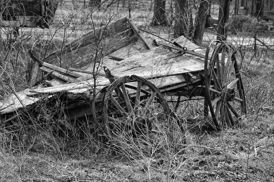 Wagon Photograph - Cotton Picking Tired by Kelly Kitchens