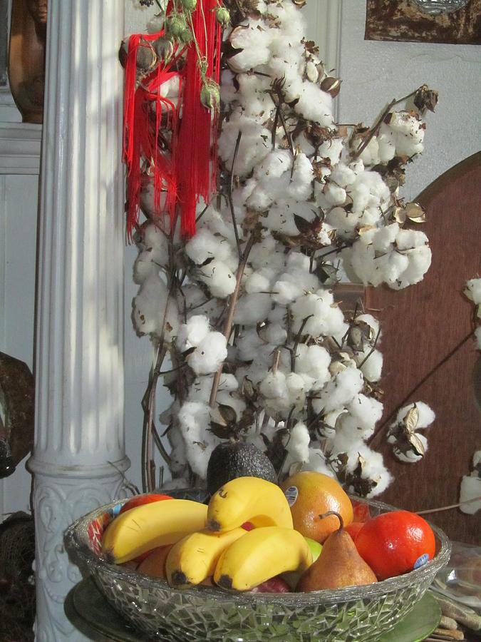 Cotton Digital Art - Cotton by Stephanie Francis