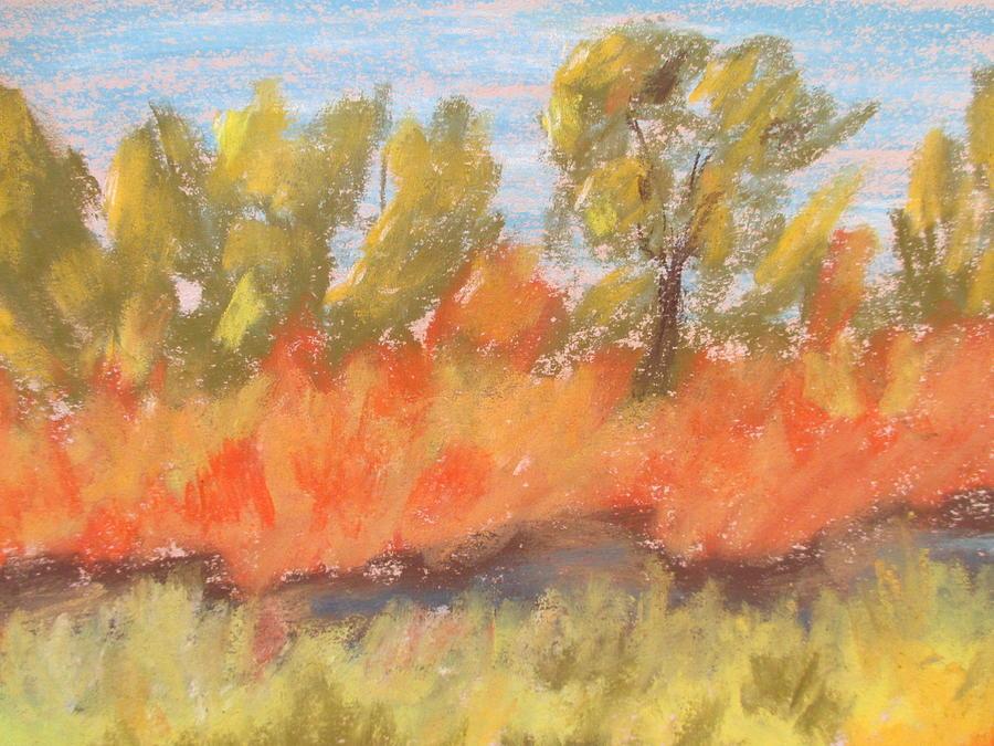 Trees Pastel - Cottonwood Grove by Steve Jorde