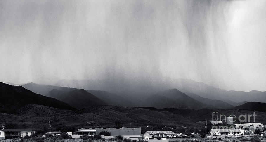 American Photograph - Cottonwood Rain by Arne Hansen