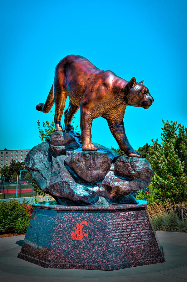 Cougar Pride Sculpture Washington State University