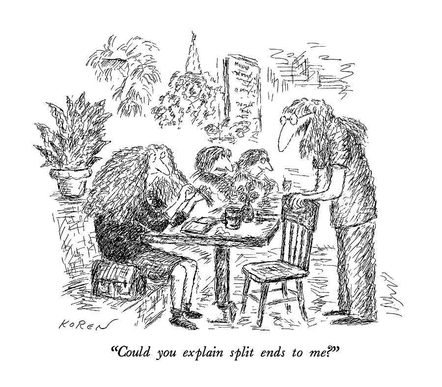 Could You Explain Split Ends To Me? Drawing by Edward Koren
