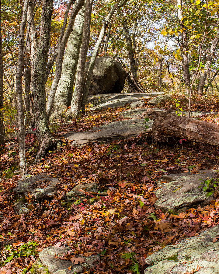 Council Rock Photograph - Council Rock by Kirkodd Photography Of New England