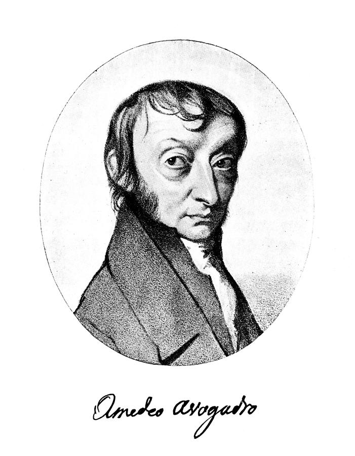 19th Century Painting - Count Amedeo Avogadro (1776-1856) by Granger