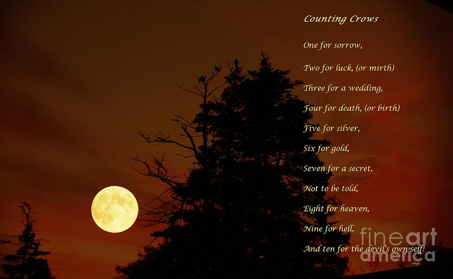Counting Crows Photograph - Counting Crows - Old Superstitious Nursery Rhyme by Barbara Griffin
