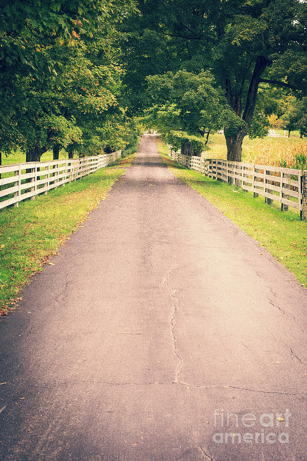 Vermont Photograph - Country Back Roads by Edward Fielding
