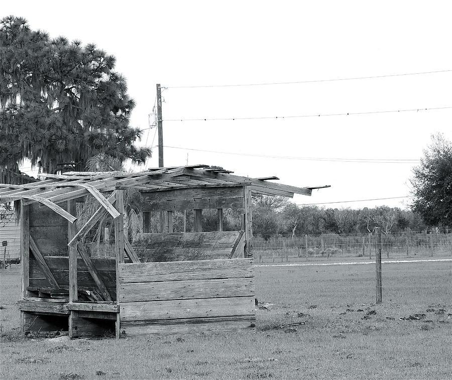 Landscape Photograph - Country Blues by Santiago Rodriguez