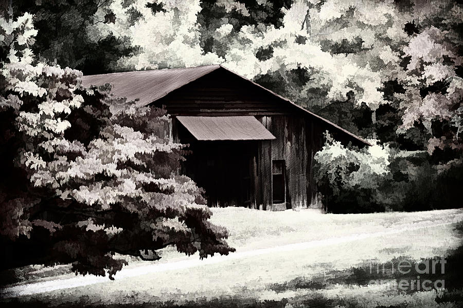 Agricultural Photograph - Country Charm In Dramatci Bw by Darren Fisher