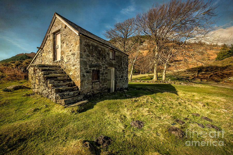 Hdr Photograph - Country Cottage by Adrian Evans