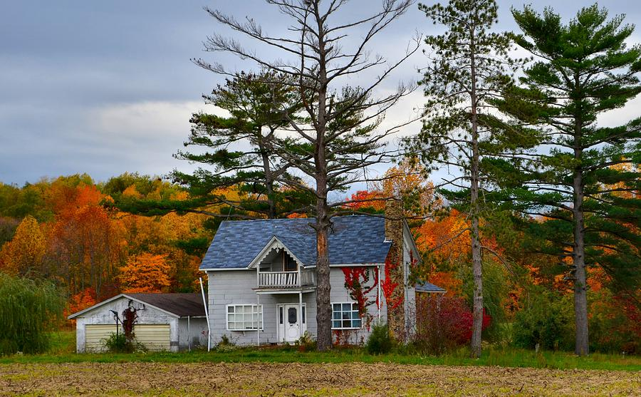 Autumn Scenes Photograph - Country Cottage In Autumn by Julie Dant
