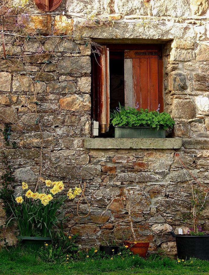 Country Courtyard Ireland Photograph