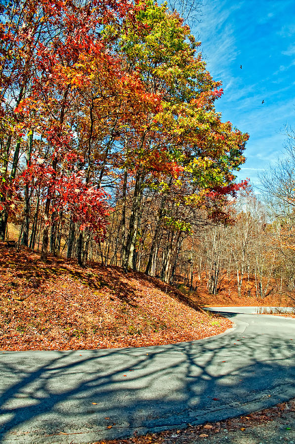 West Virginia Photograph - Country Curves And Vultures by Steve Harrington