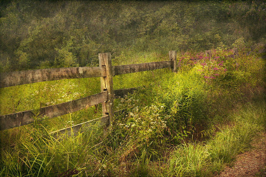 Country Photograph - Country - Fence - County Border  by Mike Savad