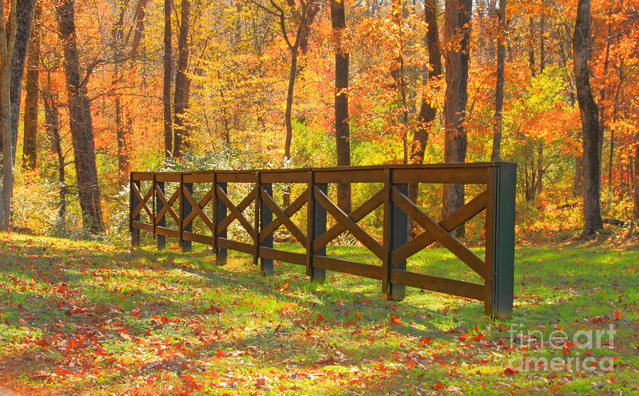 Fence Photograph - Country Fence by Geraldine DeBoer