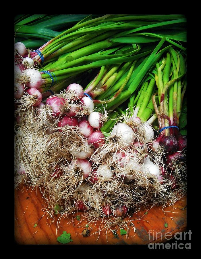 Scallions Photograph - Country Kitchen - Onions by Miriam Danar