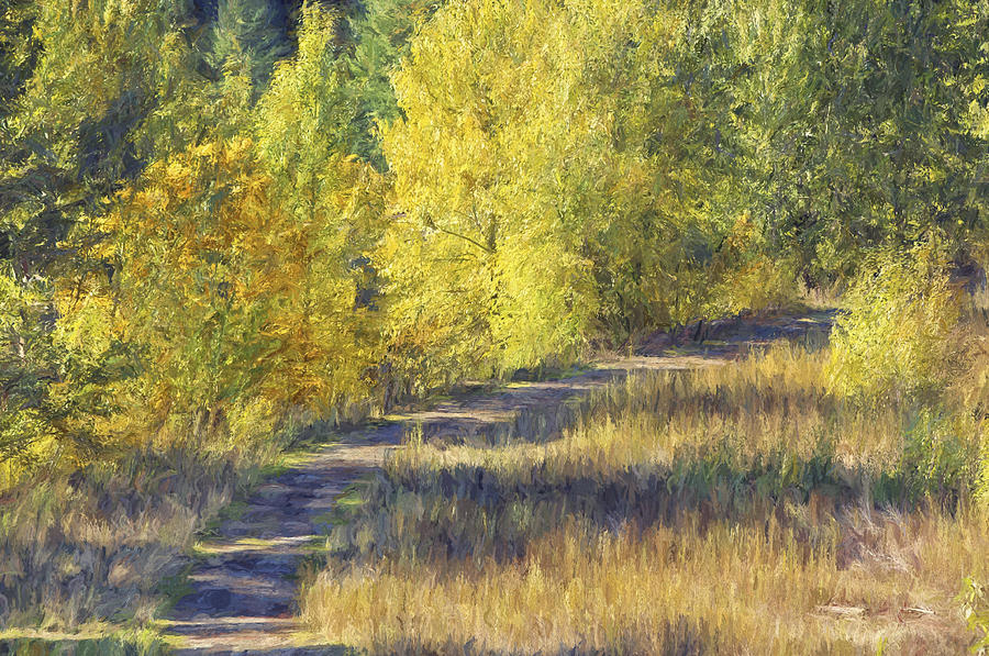 Country Lane Photograph - Country Lane Digital Oil Painting by Sharon Talson