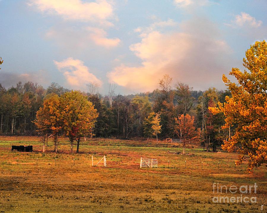 Autumn Photograph - Country Morning by Jai Johnson